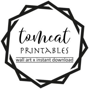 tomcat 500